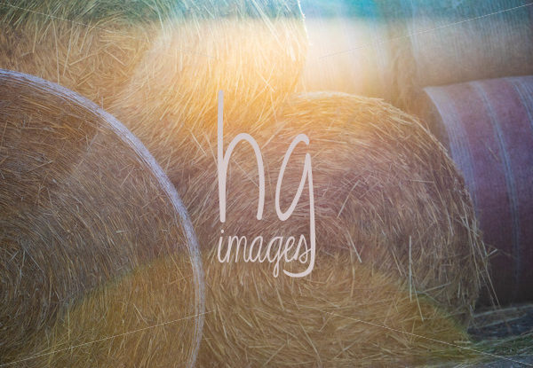 StockPhoto-57_bales.jpg - HG Images Photography